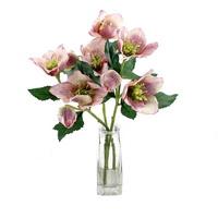 3x Christrosen Zweige pinkrosa je 2Bl 1Kn L 32cm Helleborus Schneerose