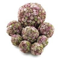 Sedum Kugel rosa, Sedum Ball, Fette Henne, künstlich, sehr dekorativ !