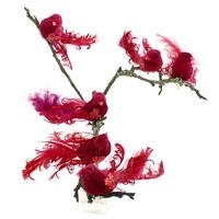 6 Stück Paradies Vögel mit Clip in d.-rot, Federn und Samtkörper !!!