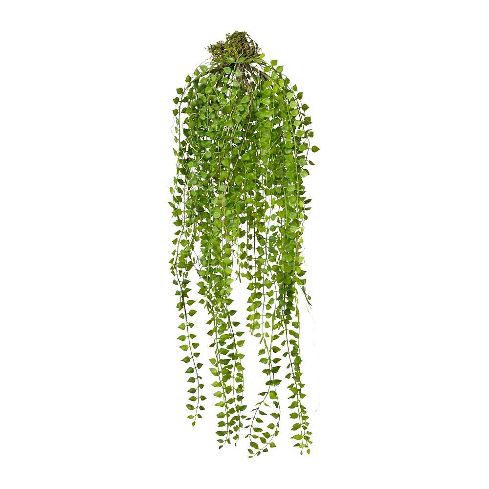 Columnea Hänger grün, 45/70cm Länge, Kunststoff Hängepflanze m. Wurzel
