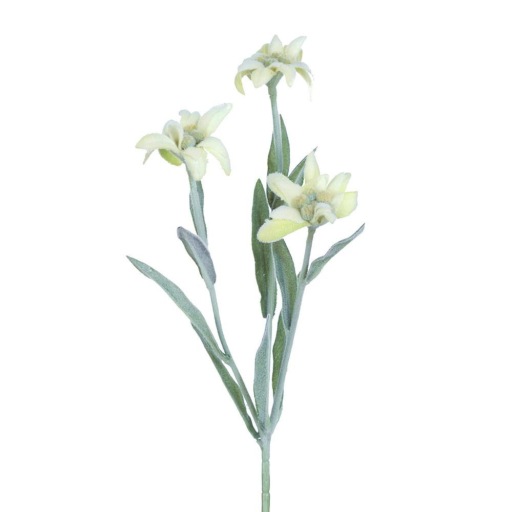 EDELWEISS x3 creme/grün, Pick mit 3 Blüten, L29cm, Kunstseide !!!