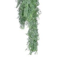 Russelia Hänger grün 75cm L, Kunststoff Hängepflanze, Wegerichgewächse