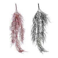 Asparagus Zweig hängend 80cm Länge/ 4 Triebe, Kunststoff, Top Qualität