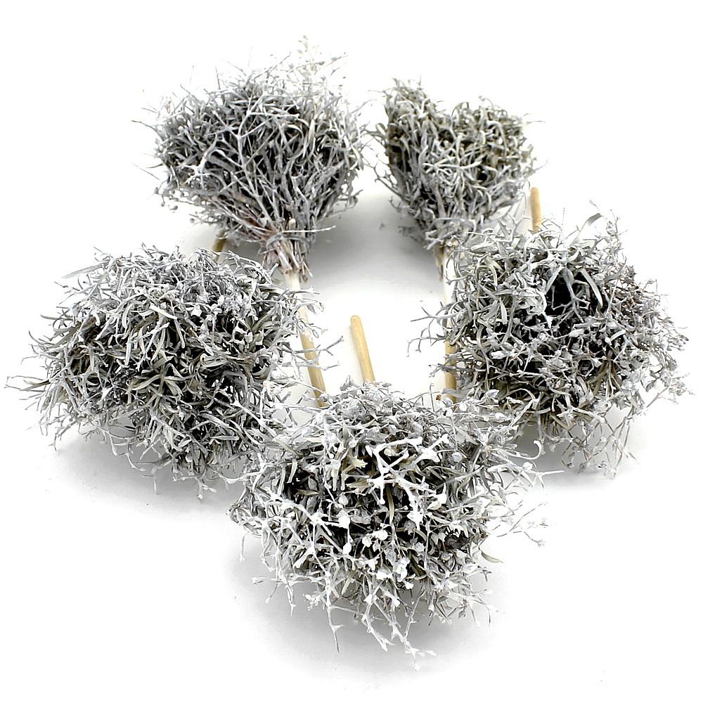 Ironbusch Pick, 5 St. weiß gewachst am Holzstab, 10cm/20cm