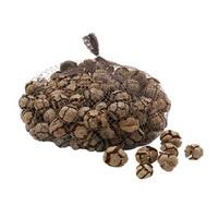 Zypressen Zapfen natur 2-3cm 1kg, Cypressen Zapfen, Bastelzapfen !!!