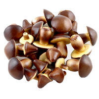 24 x Deko Pilze in 2 Größen, braun/beige, PU-Schaum, künstlich !!!